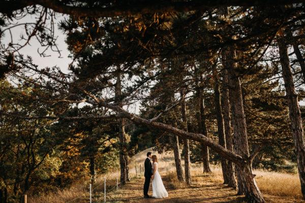 Laura & Horia - Brasov Wedding {Yaz}